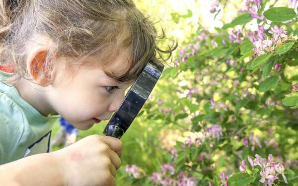 Standard nature senses walk challenge